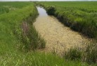 Drainage Ditch DP World Mitigation Habitat Enhancement Case Study