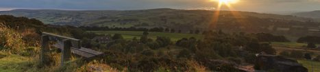 The Ecology Consultancy opens office in the north