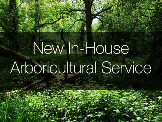 In-house arboricultural services