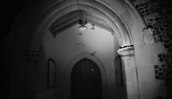 Thermal Imaging footage of bats in church