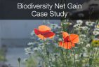 Biodiversity Net Gain case study - The Ecology Consultancy